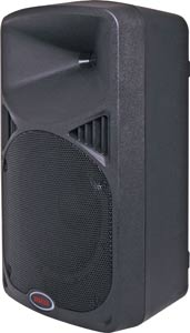 "250mm (10"") 2 Way MP3 USB Powered PA Speaker"