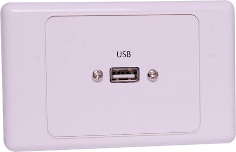 USB Single Wallplate Dual Cover with Socket Flylead